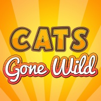 Cats Gone Wild Coloring Pages