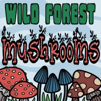 Wild Forest Mushrooms Coloring Pages